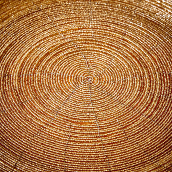 Blaze Beaded Placemat