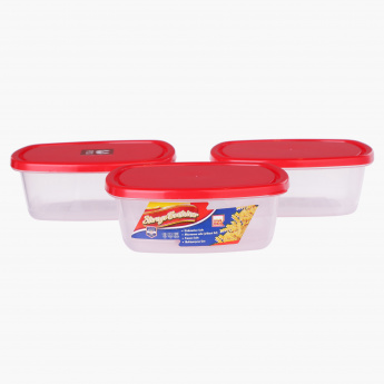Spectra 3-Piece Silver Container Set