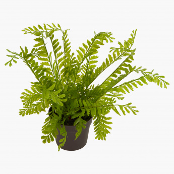 Fran Decorative Plant with Pot