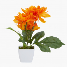 Donna Decorative Dahlia Flower with Pot